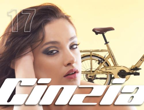 Grafiche per biciclette Cicli Cinzia 2017