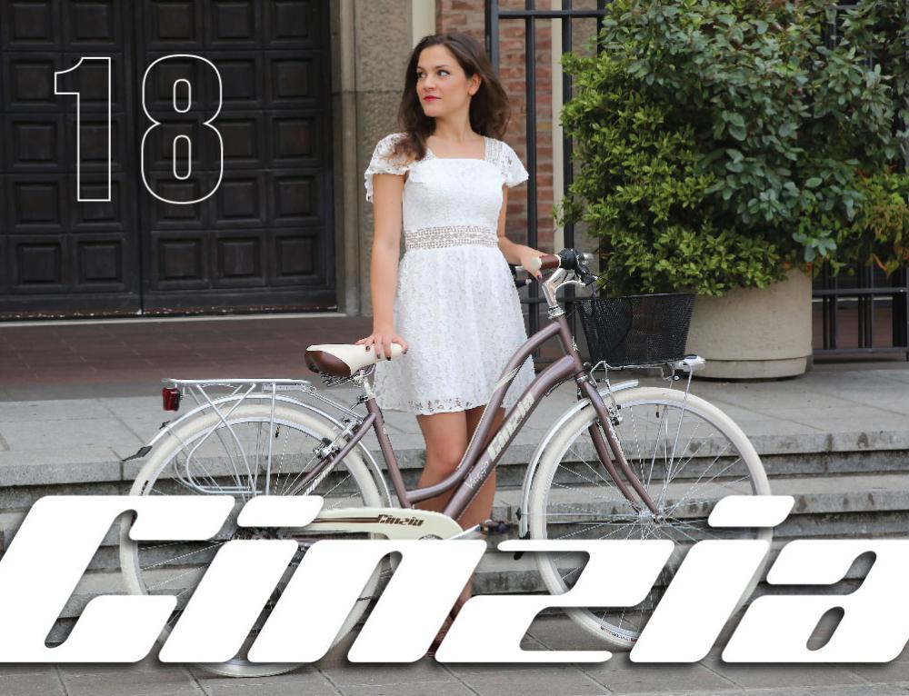 Grafiche per biciclette Cicli Cinzia 2018