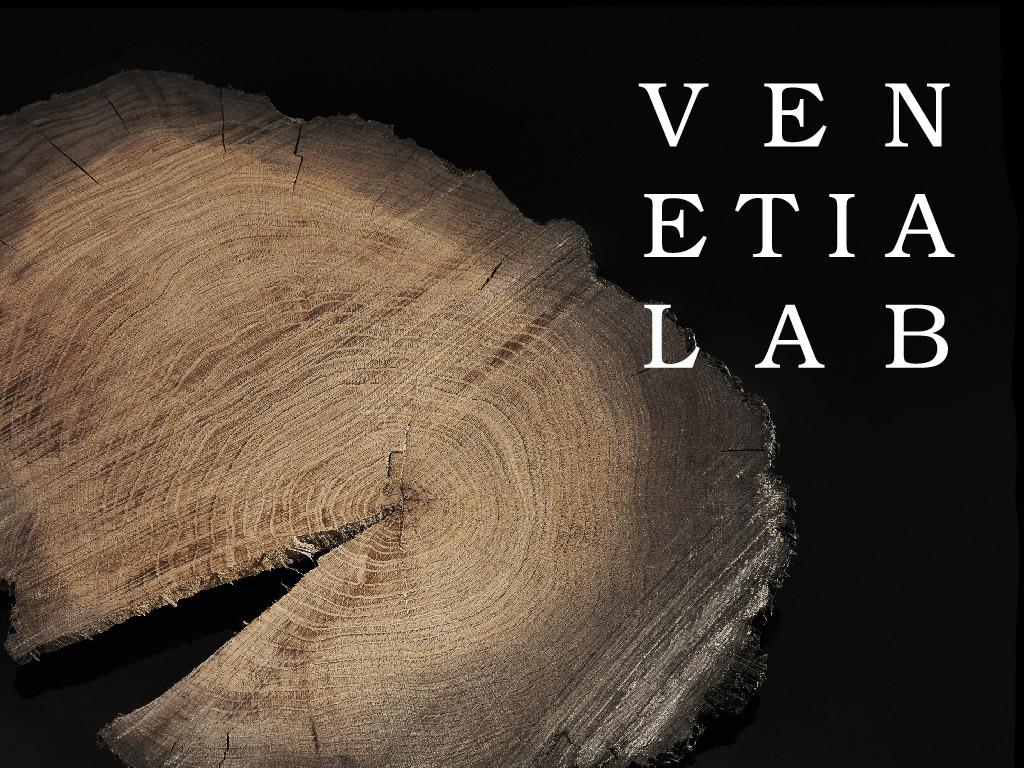 Sito Web Venetia Lab