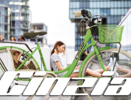 Grafiche per biciclette Cicli Cinzia 2019