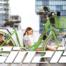 grafiche biciclette Cicli Cinzia 2019