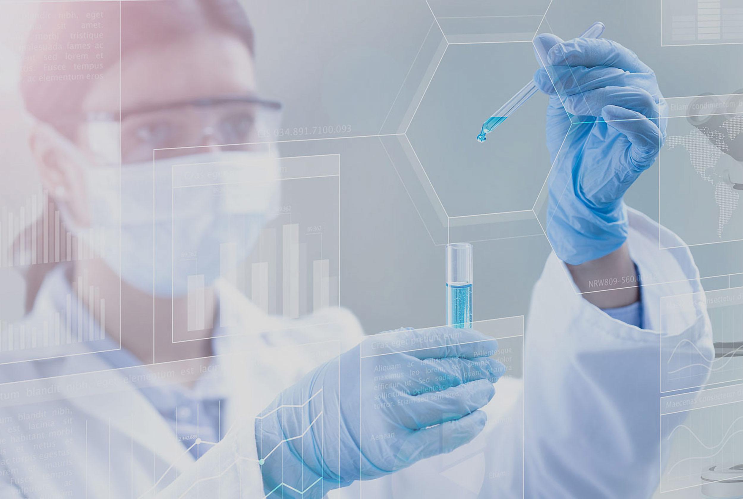 creazione sito web kimika